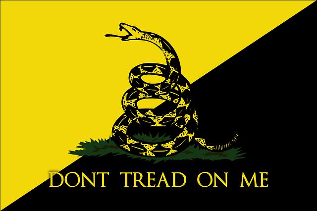 flag-78812_640