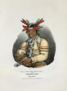 a miami chief